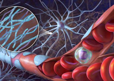 Cellular Illustration